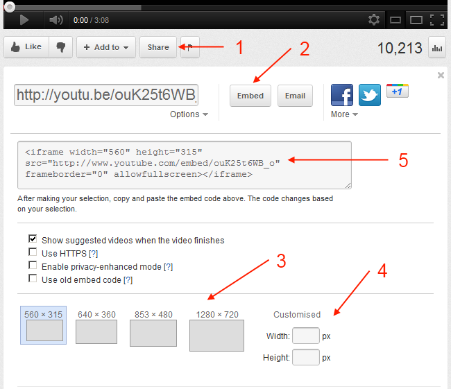 video embedding options on YouTube