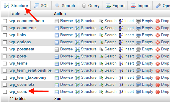 wp_users table in WordPress database