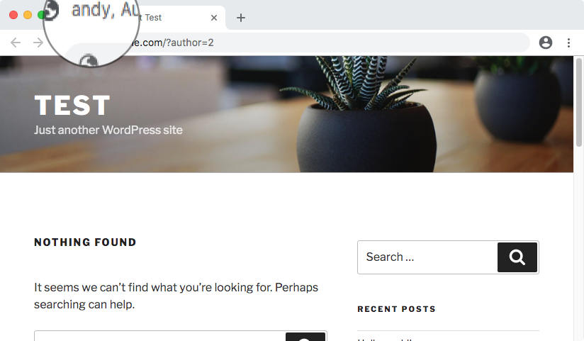 WordPress user also displayed in the browser tab