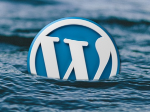 Crunching the Numbers – Too Many WordPress Vulnerabilities Can Only Mean Good Things