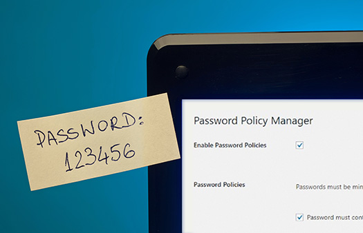 Password Policy Manager for WordPress Plugin - WP White Security