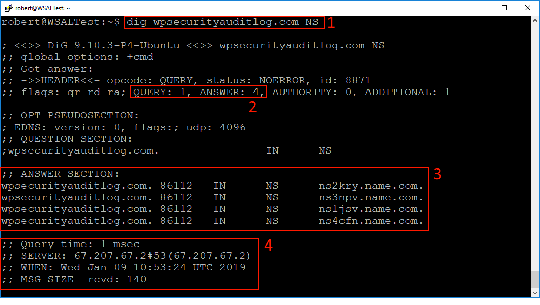 Using the Dig DNS tool to query the NS records