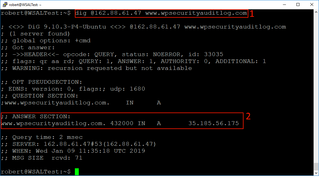 Using the Dig tool to connect to send requests to a specific DNS server