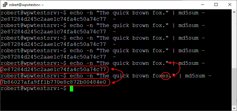 Different text generates different MD5 hashes