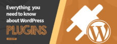 Featured image *What are WordPress plugins*